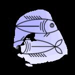 Balık Burcu Ağustos 2021 Burç Yorumu